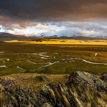 Horse Tour to the Ukok Plateau